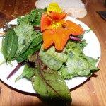 Mein Kräutersalat